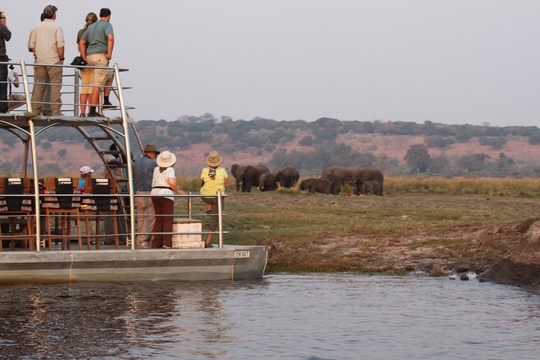 Chobe Boat Cruise Safari